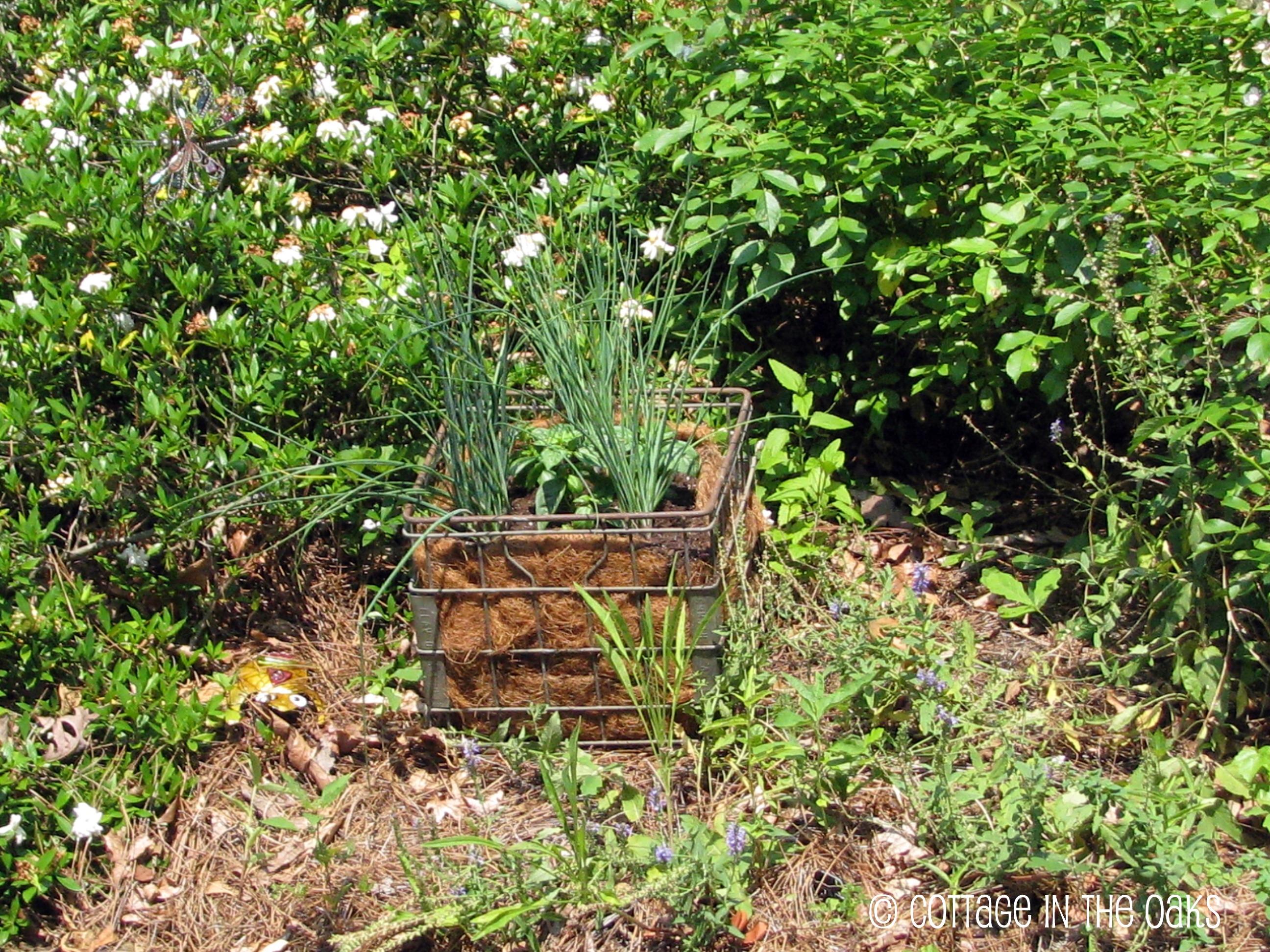 DIY Milk Crate Garden Cottage in the Oaks