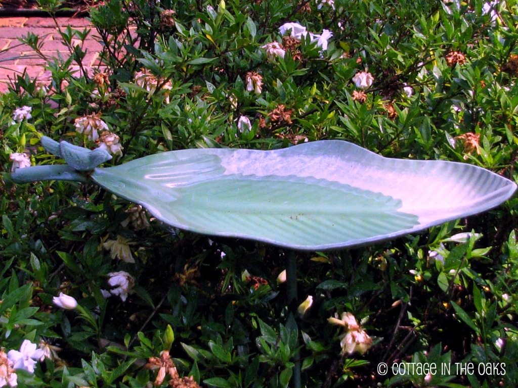 Attracting Butterflies & Hummingbirds.... - Cottage in the ...