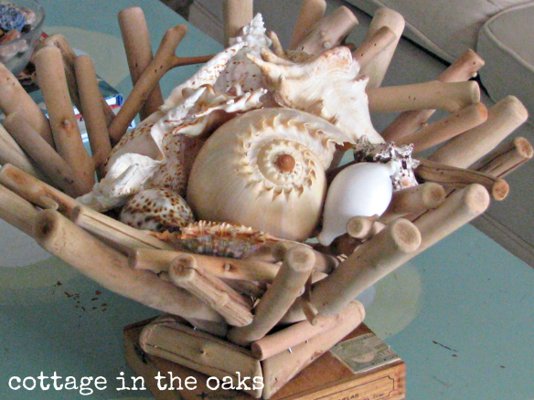 driftwood basket with shells