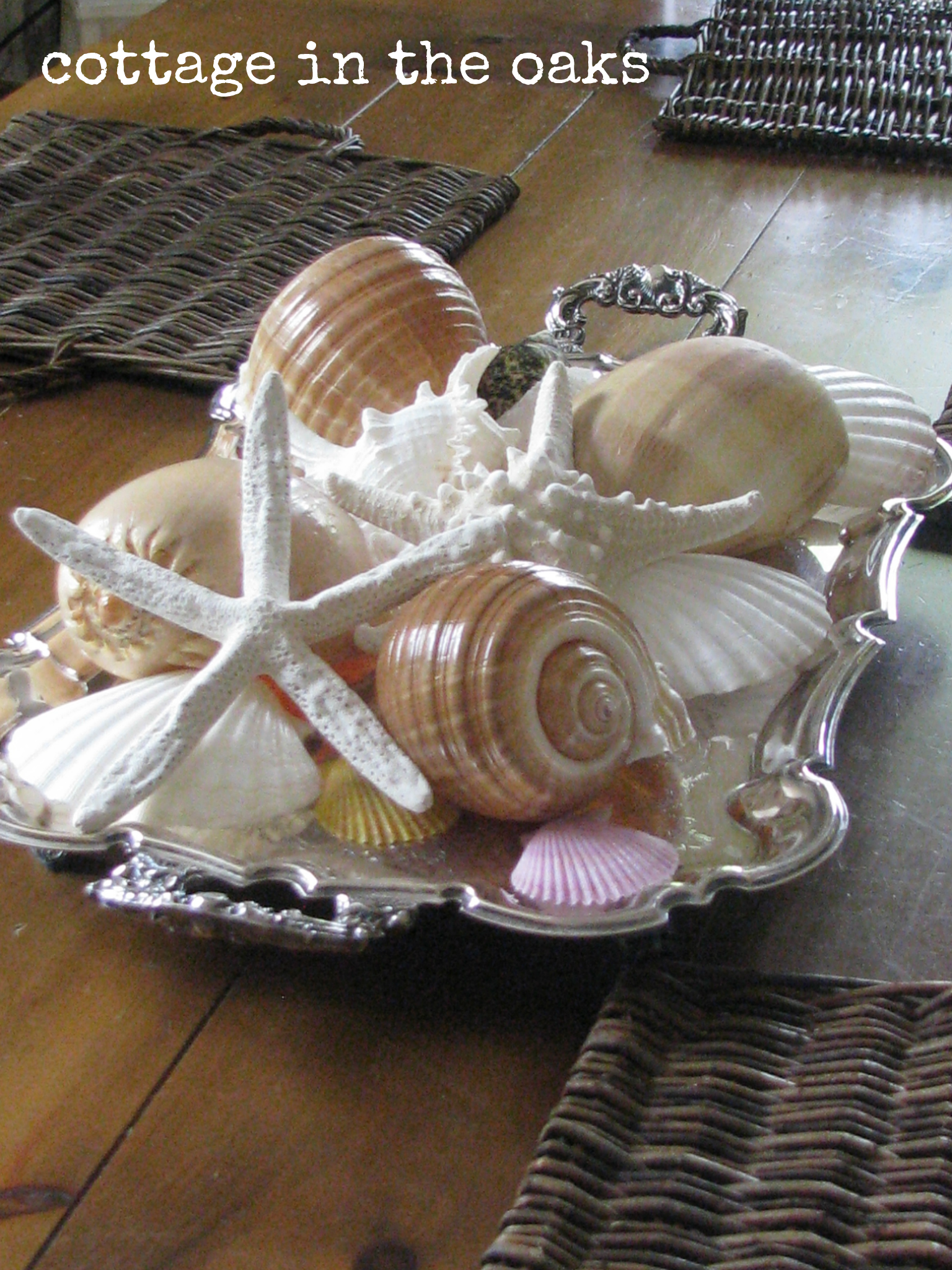 Silver Tray With Seashells