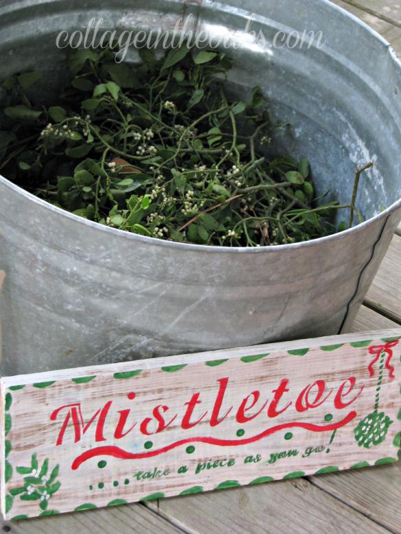 bucket of mistletoe