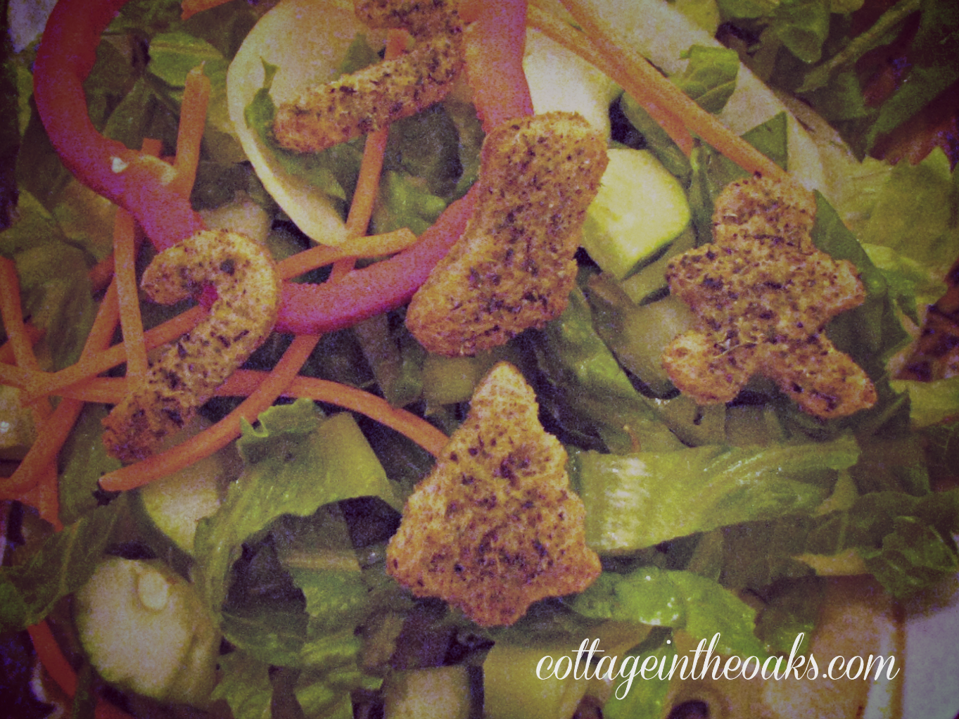 christmas croutons on salad