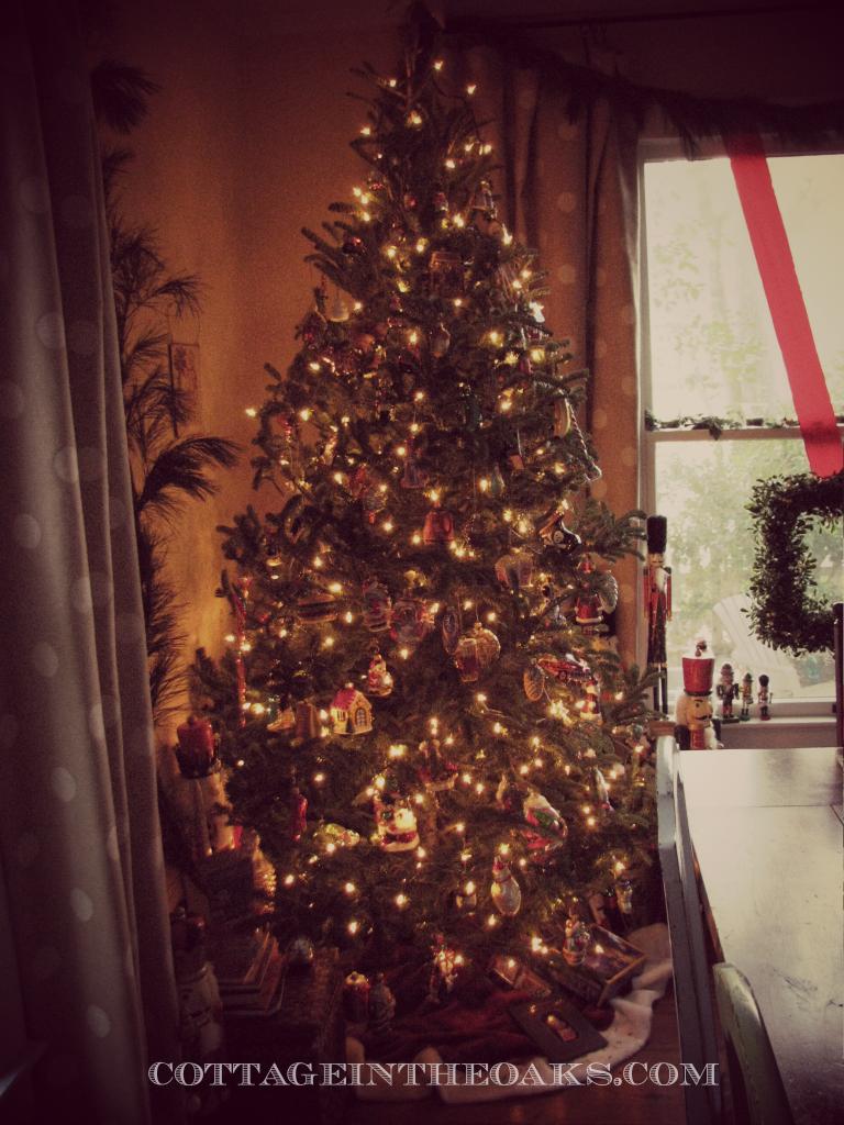 tree in dining room